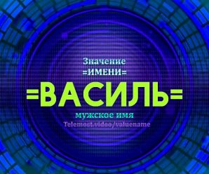 Значение имени Василя