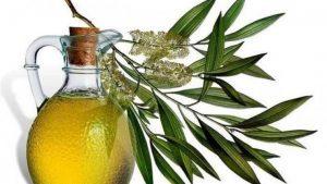 Эвкалиптовое масло – способы применения
