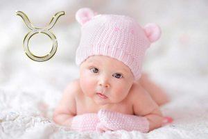 Ребенок телец – черты характера