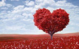 День Влюбленных: как провести, что можно подарить