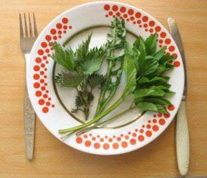 Салаты из весенней зелени