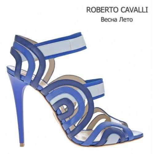 Изящная обувь Roberto Cavalli
